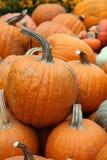 Display of assorted Pumpkins Royalty Free Stock Photos