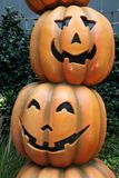 Display of assorted Pumpkins Royalty Free Stock Photo