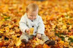 Display Autumn Fall Baby Boy Child Stock Photos