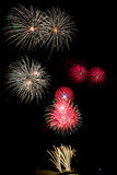 Display of Blooming firework. Mixed color Stock Photography