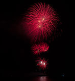 Display of Blooming firework. Mixed color Royalty Free Stock Image