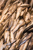Display of caught fish. Seen in Turkish town market Stock Photography