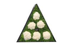 Display of Cauliflowers. Stock Photo