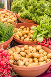 Display of fresh vegetables at the market Stock Photography