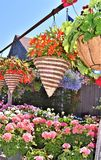 Display of colorful hanging floral straw baskets in front of a barn in Hillsborough County, New Hampshire, United States, US. Colorful display of hanging brown Royalty Free Stock Photo