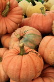 Display of colorful pumpkins and squash at farm stand Royalty Free Stock Photography