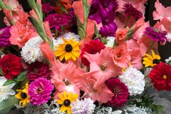 Display of Colourful Cut Flowers Stock Photos