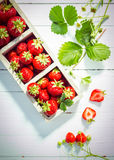 Display of delicious ripe red strawberries Royalty Free Stock Photos