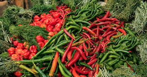 A display of different variety of chilly peppers and herbs royalty free stock photos