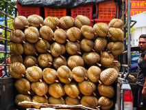Display of durian fruit on trailer with vendor Bangkok, Thailand Stock Images