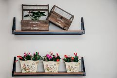 Exquisite flower shop wall display royalty free stock photo