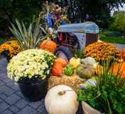 Fall vegetables and flowers Royalty Free Stock Photography