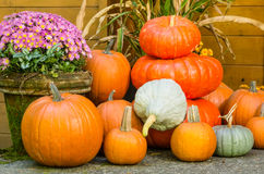 Display of fall pumpkin decorations Royalty Free Stock Photography