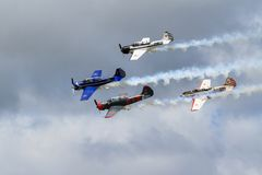 Four Yak-52 trainer aircraft in formation, trailing smoke royalty free stock images