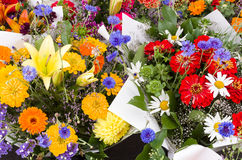 Display of fresh flowers Stock Photography