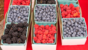 Display of fresh picked berries. Fresh picked display of berries at the farmers market Stock Images