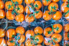 Fresh orange cherry tomatoes Royalty Free Stock Photo