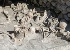 Display of human skeletons, Parco Archeologico di Ercolano. Pictured is a display of human skeletons in the Parco Archeologico di Ercolano. The archaeological Royalty Free Stock Photo