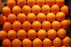 Display of oranges in market Royalty Free Stock Photo