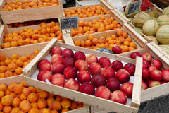 Display of peaches and apricots in the market Royalty Free Stock Photos