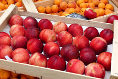 Display of peaches and apricots in the market Stock Image
