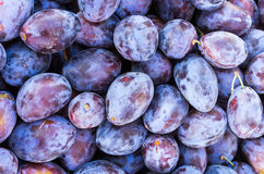 Display of prune plums at the market Stock Photos