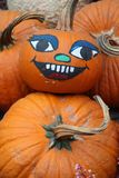 Display of assorted Pumpkins Stock Photography