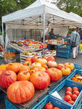 Display of pumpkins for sale on a Belgian market. Halle, Belgium - September 26, 2015: Display of pumpkins for sale on a Belgian market stock image