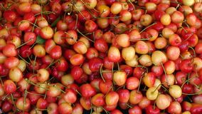 Display of red and white cherries on a Greek market. Red and white cherries on a Greek market Stock Photo