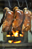Display of roasting ducks in Beijing Royalty Free Stock Photography