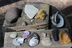 Display of shells used by the upper ohio valley natives at the Meadowcroft Rockshelter And Historic Village. Meadowcroft rockshelter is an archaeological site Royalty Free Stock Photography
