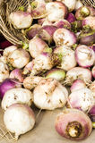 Display of turnips at the market Royalty Free Stock Photography