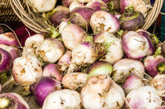 Display of turnips at the market Stock Images
