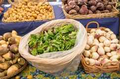 Display of vegetables at the market Stock Images