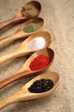 Displaying dried spices. Royalty Free Stock Photos