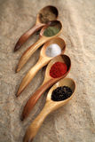 Displaying dried spices on spoons. Stock Image