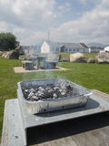 The disposable barbecue at picnic table. A small throw away bbq lit and ready to cook Stock Photo