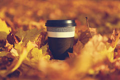 Disposable coffee cup Stock Photos