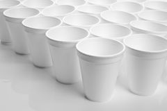Disposable Cup. Close up shot Royalty Free Stock Image