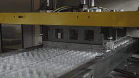 Disposable food package ware manufacturing plant, eggs container production line stock video