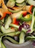 disposer食品废弃部 免版税库存照片