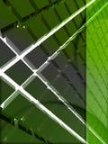 Disposição 3d verde Fotos de Stock Royalty Free
