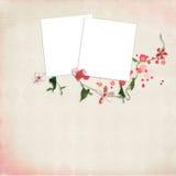 Disposição com frames para fotos Fotos de Stock Royalty Free