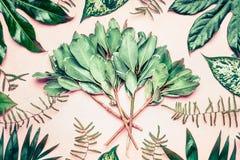 Disposição criativa feita da palma e folhas e ramos tropicais da samambaia no fundo do rosa pastel Fotos de Stock Royalty Free