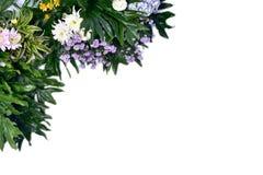Disposição criativa feita das folhas tropicais coloridas no fundo branco Conceito exótico do verão mínimo com espaço da cópia Arr imagem de stock