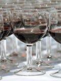 Disposição do copo de vinho Imagem de Stock