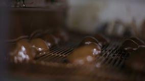 Disposição e coberta dos frutos secos com chocolate, fabricação dos confeitos vídeos de arquivo