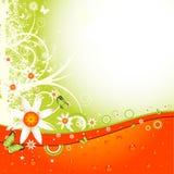 Disposição floral Fotos de Stock