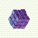 Disposição infographic da projeção isométrica de cubos Fotos de Stock Royalty Free