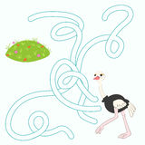 A disposição para o labirinto do jogo encontra uma avestruz da maneira Imagem de Stock